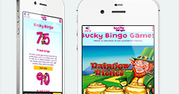 The Bucky Bingo Mobile Site is Compatible with Smartphones and Tablets
