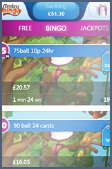 The bingo rooms featured at Monkey for your phone