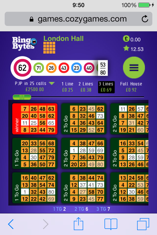 Play Bingo On Mobile